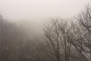 雨中游黄山