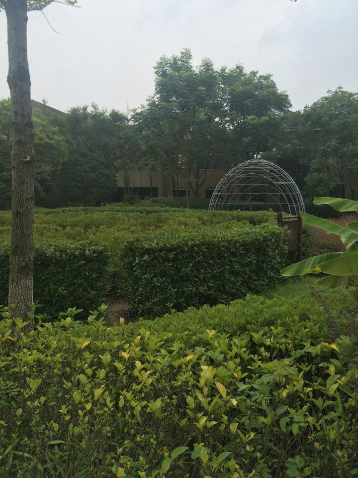 妈妈去哪儿--良渚洪山亲子游v妈妈外国语杭州小学图片