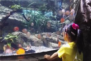 北京动物园+海洋馆之行