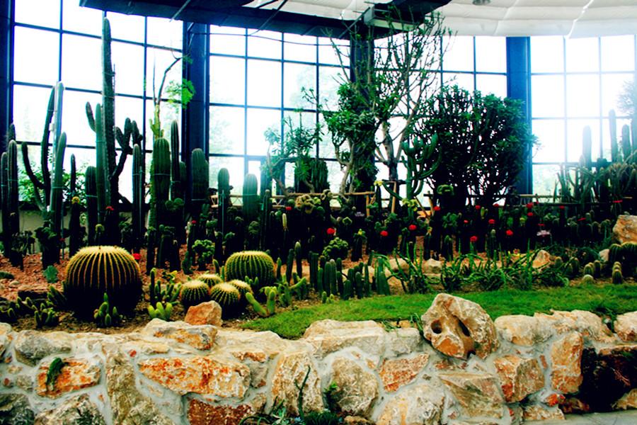 苏州太湖国家湿地公园热带沙生植物科普馆