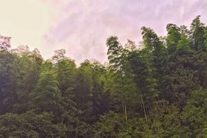 【生活仕】【2日游】【度假】【余姚四明湖&阳澄湖】【阴雨】