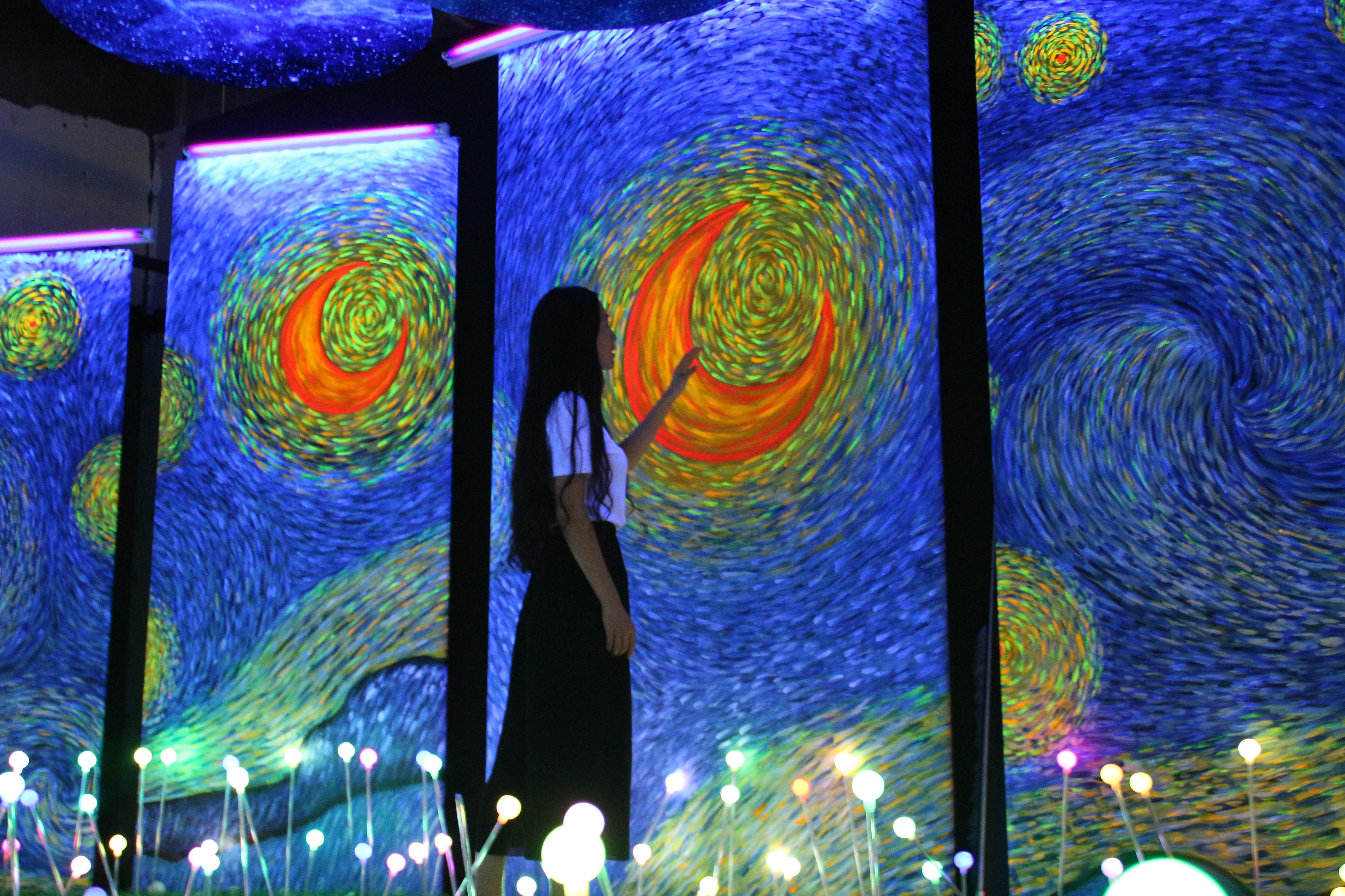 展览主题 遇见梵高,雾时之森,紫藤隧道,无极地井,无限星空,夕阳剪影