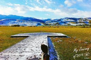 【我是达人】漫步金秋北疆,走进绚烂童话