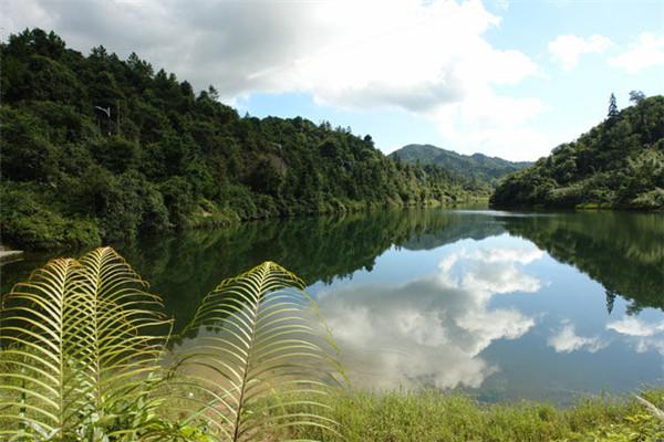是山岳型自然风景区,323国道从森林公园服务区横穿而过,西有107国道图片