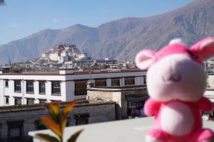 梦想的圣地,终与你相会——西藏11日游全纪录