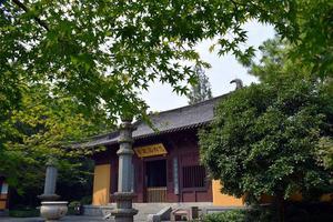 【我是达人】最忆是杭州,雅谷可栖息
