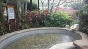 惠州龙门南昆山温泉旅游大观园