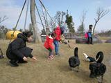 苏州大阳山国家森林公园植物园