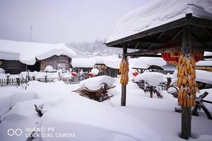 我爱你东北的雪——哈尔滨、牡丹江、长白山、吉林双飞6日跟团游