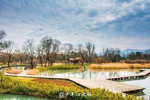 【我的达人】你的烟雨情,我的江南梦——杭州西湖、南宋皇城小镇、九溪、西溪之旅