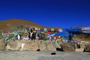 【新年新旅程】西藏行