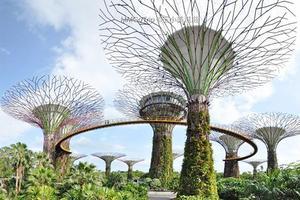 【新年新旅程】新加坡城市漫游