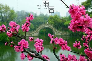 【我是达人】#苏州周边小度假#与君再渡娄东水,同回锦绣金太仓