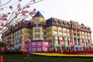 【背着Doughnut去旅行】住花之恋酒店,逛百万葵园,享受色彩斑斓的春天
