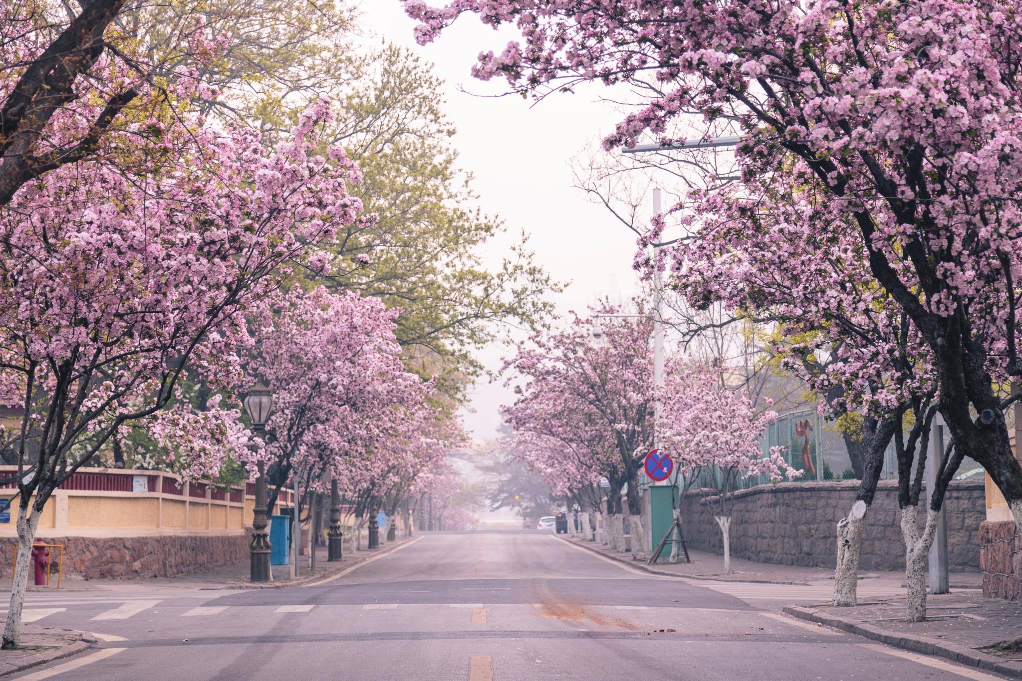 青岛日照旅游攻略_青岛图片大全_青岛风景图片/景点照片/旅游摄影【驴妈妈攻略】
