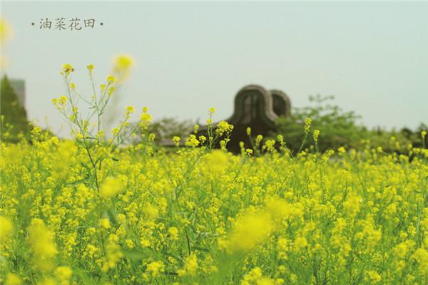 广州岭南印象园集美岭南印象春色