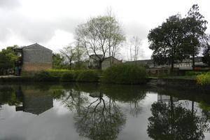 渼陂古村的春雨漫漫