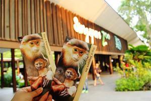 【背着Doughnut去旅行】新加坡之旅——留在心底的那一抹绿
