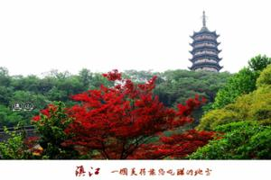 【我是达人】【苏州三山岛】太湖小蓬莱,悠游诗画中(图文攻略)