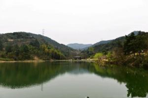 【我是达人】春之江南:半幅德清塔山森林公园