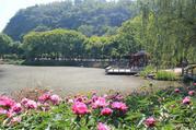 南京长江观音景区