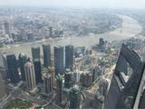 """上海中心大厦""""上海之巅观光厅""""+黄浦江游览(清江游)"""