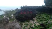 涠洲岛火山国家地质公园上岛通票
