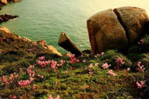 【我是达人】奇山异石,浑然天成南麂岛