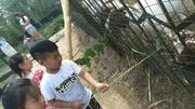 北京红螺湖鸟岛