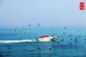 【我是达人】#威海#六月,我们看海去