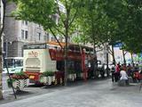 春秋都市观光旅游巴士
