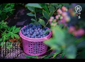 【我是达人】朝天|自然自在,清凉一夏-4天3晚川北旅行日记!