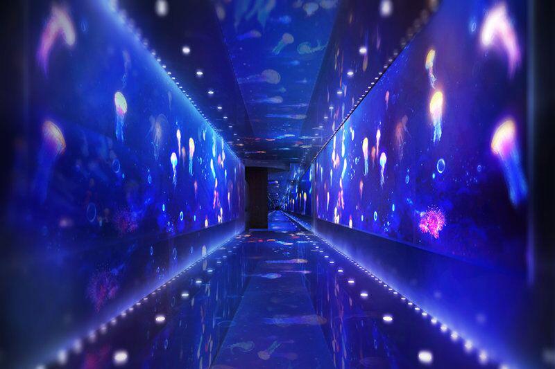 北京富国海底世界海底时空隧道