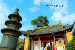 【我是达人】东抵黄海、南望长江,一抹秋色照南通