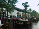 海棠湾水稻公园《田野狂欢》大型实景演出