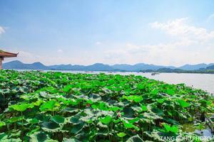 【我是达人】杭州:人间般的天堂,景色宛如仙境,醉在西湖山水里。