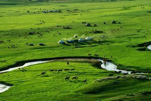 聚焦内蒙古:康体养生游
