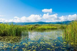【我是达人】在丽江与泸沽湖,享受诗情画意般的避暑时光