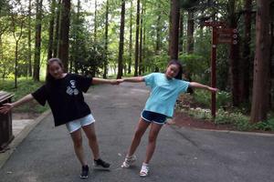 东平森林公园-天然大氧吧