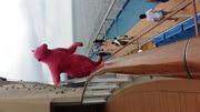 【皇家加勒比-海洋量子号】上海-长崎-上海 4晚5天 8月12日
