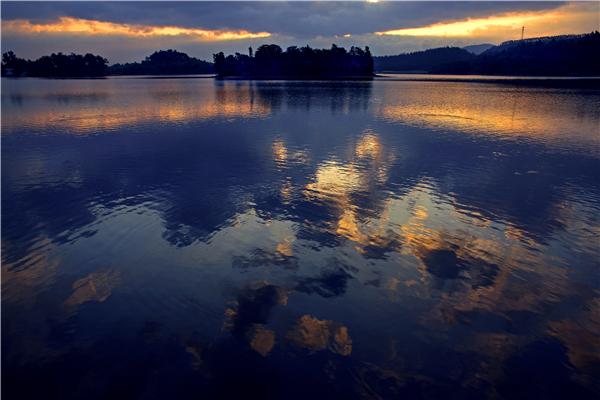 美的鹭湖森林度假区生态环境优美