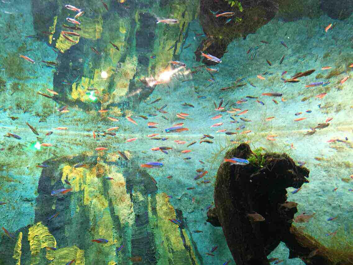 长沙海立方海洋公园