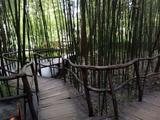 山东临沂竹泉村旅游度假区