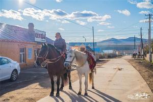 【我是达人】【2017、内蒙古呼伦贝尔】一路驰骋,只为一眼广袤土地的草原之秋