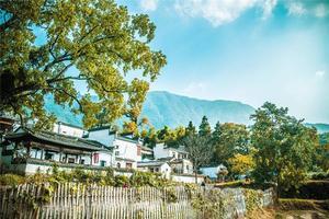 【我是达人】宏村福地因水起,黄山最美是秋天