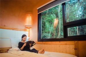 【我是达人】住温泉树屋听泉水叮咚在九州驿站享返璞归真的栖息之旅
