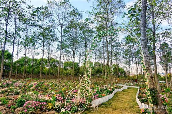 【我是达人】一个美如梦境中的海上花岛——上海周边游之崇明岛
