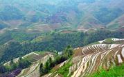 桂林龙脊梯田