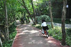 【我是达人】【南京·紫金山绿道】明城墙下、山林湖畔间的初秋骑行