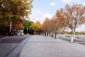 【把世界装进书里】秋游世纪公园
